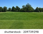 Lawn. Lawn With Forest Line An...