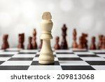 chess board with chess pieces...   Shutterstock . vector #209813068