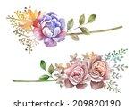watercolor illustration flower... | Shutterstock . vector #209820190