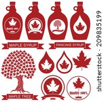 maple syrup. isolated maple... | Shutterstock .eps vector #209835199