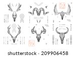 Abstract Animal Background...