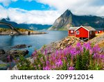 tipical red fishing houses in a ... | Shutterstock . vector #209912014