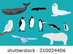 arctic and antarctica animals | Shutterstock .eps vector #210024406