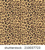 leopard seamless pattern design ... | Shutterstock .eps vector #210037723