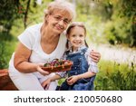 portrait of grandmother with... | Shutterstock . vector #210050680