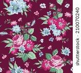 vintage floral background  ... | Shutterstock .eps vector #210070240