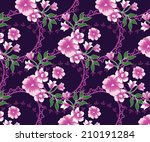 lined beautiful pink flowers... | Shutterstock .eps vector #210191284