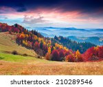 colorful autumn morning in the... | Shutterstock . vector #210289546