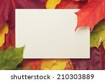 Autumn Maple Leaves With Paper...