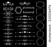 floral design elements set ... | Shutterstock . vector #210326476