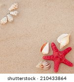 sea shells with sand  | Shutterstock . vector #210433864