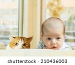 Stock photo portrait of face funny caucasian newborn toddler baby boy with red cat at home 210436003