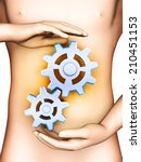 the digestive process is... | Shutterstock . vector #210451153