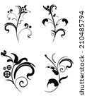set of vector floral elements... | Shutterstock .eps vector #210485794