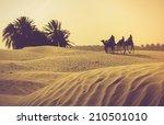 sahara desert. filtered image... | Shutterstock . vector #210501010