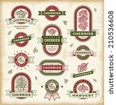 vintage cherry labels set.... | Shutterstock .eps vector #210536608