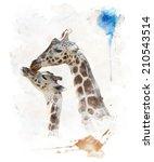 watercolor digital painting of  ... | Shutterstock . vector #210543514