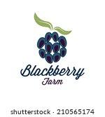 blackberry farm illustration | Shutterstock .eps vector #210565174