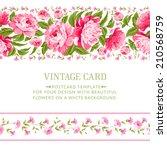 beautiful peonies card design... | Shutterstock .eps vector #210568759