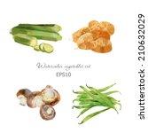 Watercolor Vector Vegetables...