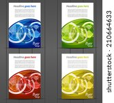 collection of business flyer... | Shutterstock .eps vector #210664633