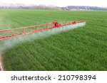 Spraying The Herbicides On The...