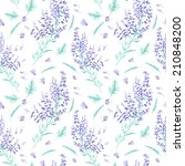background with lavender... | Shutterstock . vector #210848200