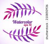watercolor floral frame. vector ... | Shutterstock .eps vector #210850936