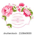luxurious invitation card of... | Shutterstock .eps vector #210860830