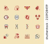body element vector color icon... | Shutterstock .eps vector #210928459