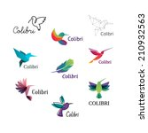 colorful colibri. hummingbirds... | Shutterstock .eps vector #210932563