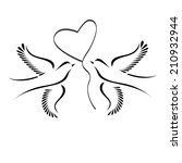 Dove Or Lovebirds With Heart