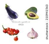 watercolor vector vegetables... | Shutterstock .eps vector #210941563