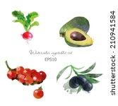 watercolor vector vegetables...   Shutterstock .eps vector #210941584