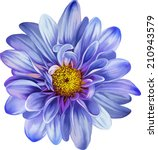 Mona Lisa Flower  Blue Flower ...