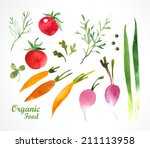 Watercolor Vegetables And Herb...