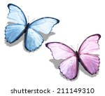 Two Blue Pink Butterfly ...