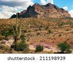 the sonora desert in central... | Shutterstock . vector #211198939