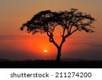 Sunset With Silhouetted Africa...