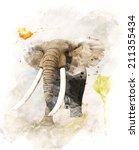watercolor digital painting of  ... | Shutterstock . vector #211355434
