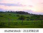 early morning over vineyards ... | Shutterstock . vector #211358218