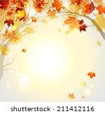 beautiful autumn background... | Shutterstock . vector #211412116