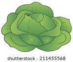 antioxidante,col,dieta,fresco,ingrediente,nutrición,nutritivo,producto,crudo,crudo,vegan,vegetariano,vitamina,conjunto