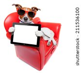 Stock photo dog holding a blank and empty tablet pc computer on a red fancy funny sofa resting and relaxing 211536100