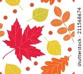 autumn seamless pattern.... | Shutterstock .eps vector #211568674