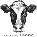 black and white sketch of a... | Shutterstock .eps vector #211603360