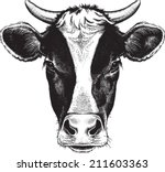 black and white sketch of a... | Shutterstock .eps vector #211603363