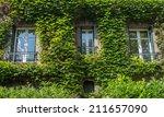 Windows In Green Ivy