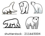 white polar bears set in... | Shutterstock .eps vector #211665004