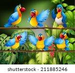 Illustration Of Many Parrots I...